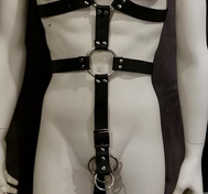 Leather Harness with Gates of Hell possibilities